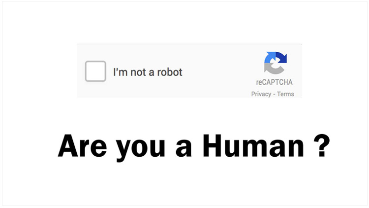 What is human verification?